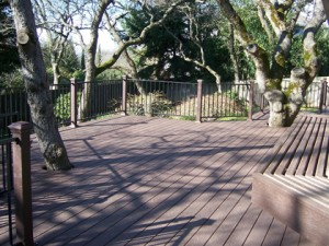 Trex Composite Deck and railing. El Dorado Hills CA